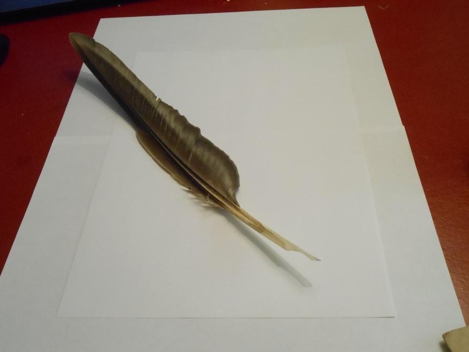 My Own Quill Pen Jan 2019