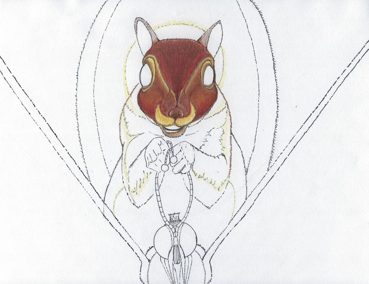 Squirrel 3b.jpg