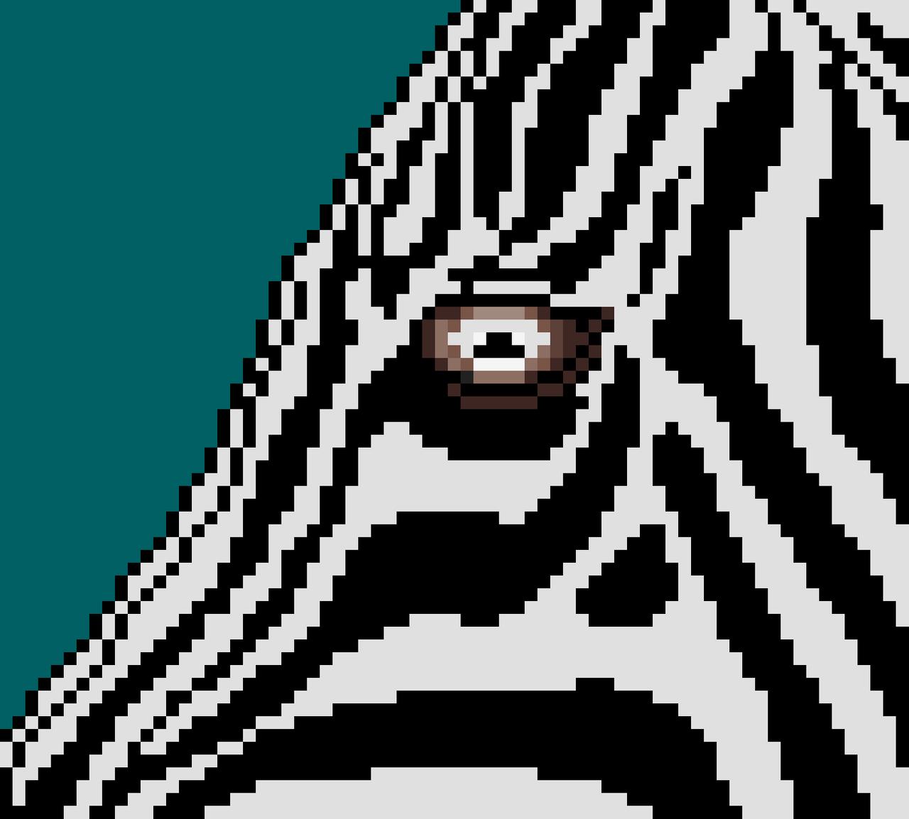 002 - Zebra Eye.png