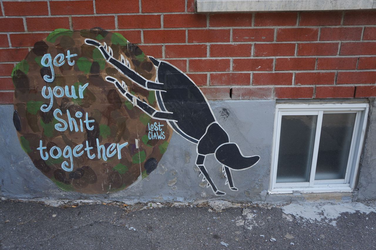 269 - Lost Claws sur Laval (321).jpg