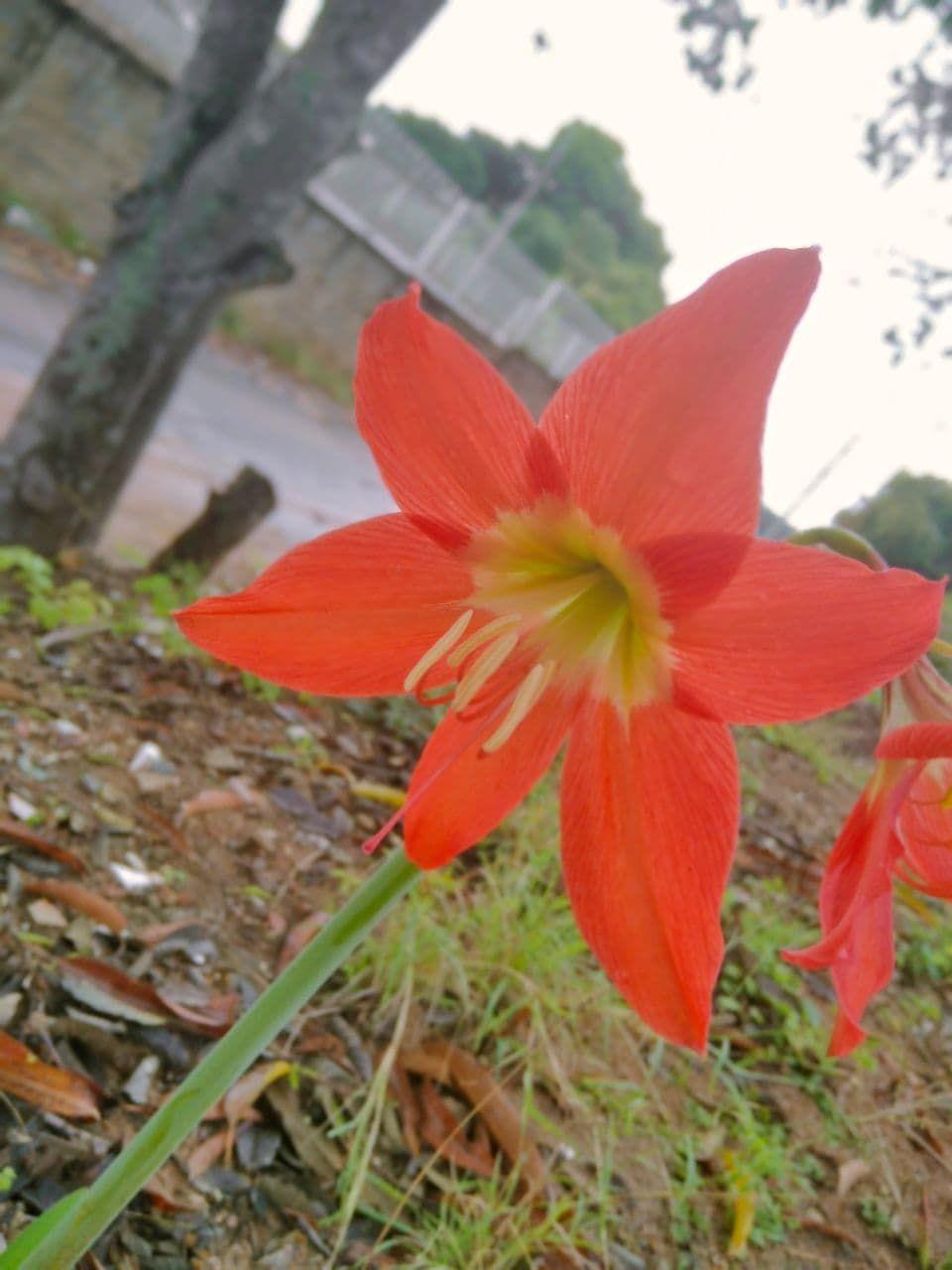 photo_2021-05-04_06-49-10.jpg