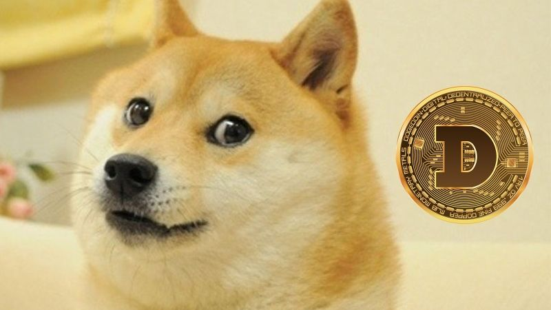 doge_power.jpg