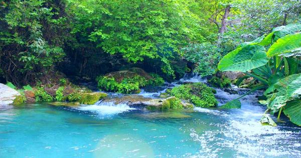 Una Maravilla natural como lo es Tamaulipas
