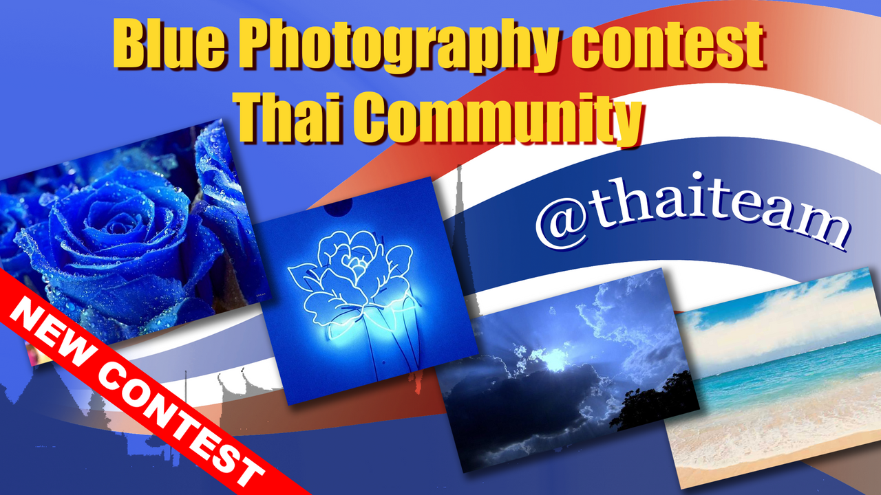 blue_photography_contest_2.png