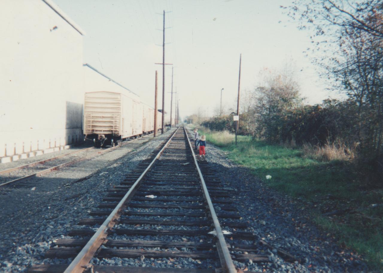 1992-11 - Josh Atkins Visit, 163 Train Tracks Hike, Video Games Playing, Crystal, around Thanksgiving-1.png