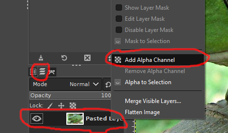 AlphaChannel.png