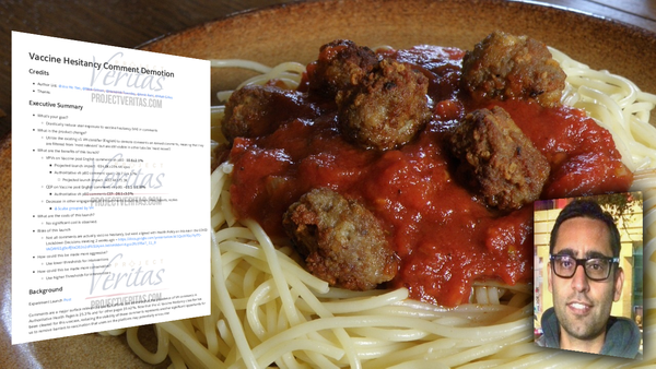 A Meatball at Facebook is Censoring Vaccine Truth.