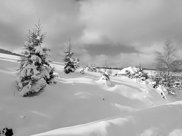 ...long farewell to winter... (#monomad, EN-UA)