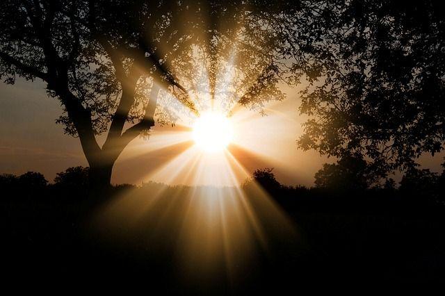 sunlight-3130638_640.jpg