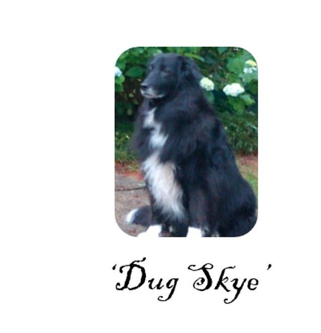 Dug-Skye.jpg