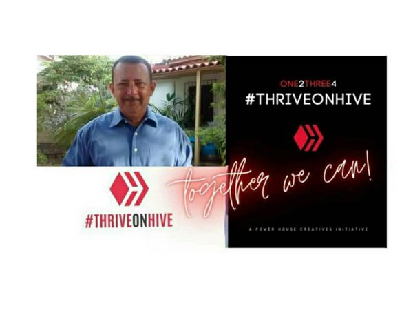 My Five for #Thriveonhive by @hengis341