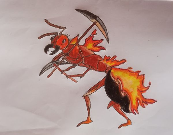 My Drawing of Ant Miners.