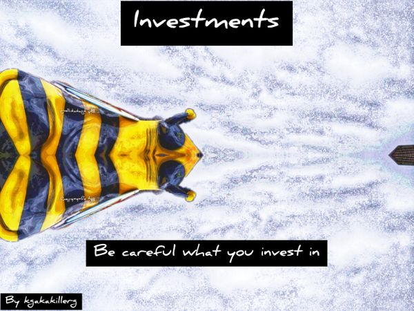 Investments part 11