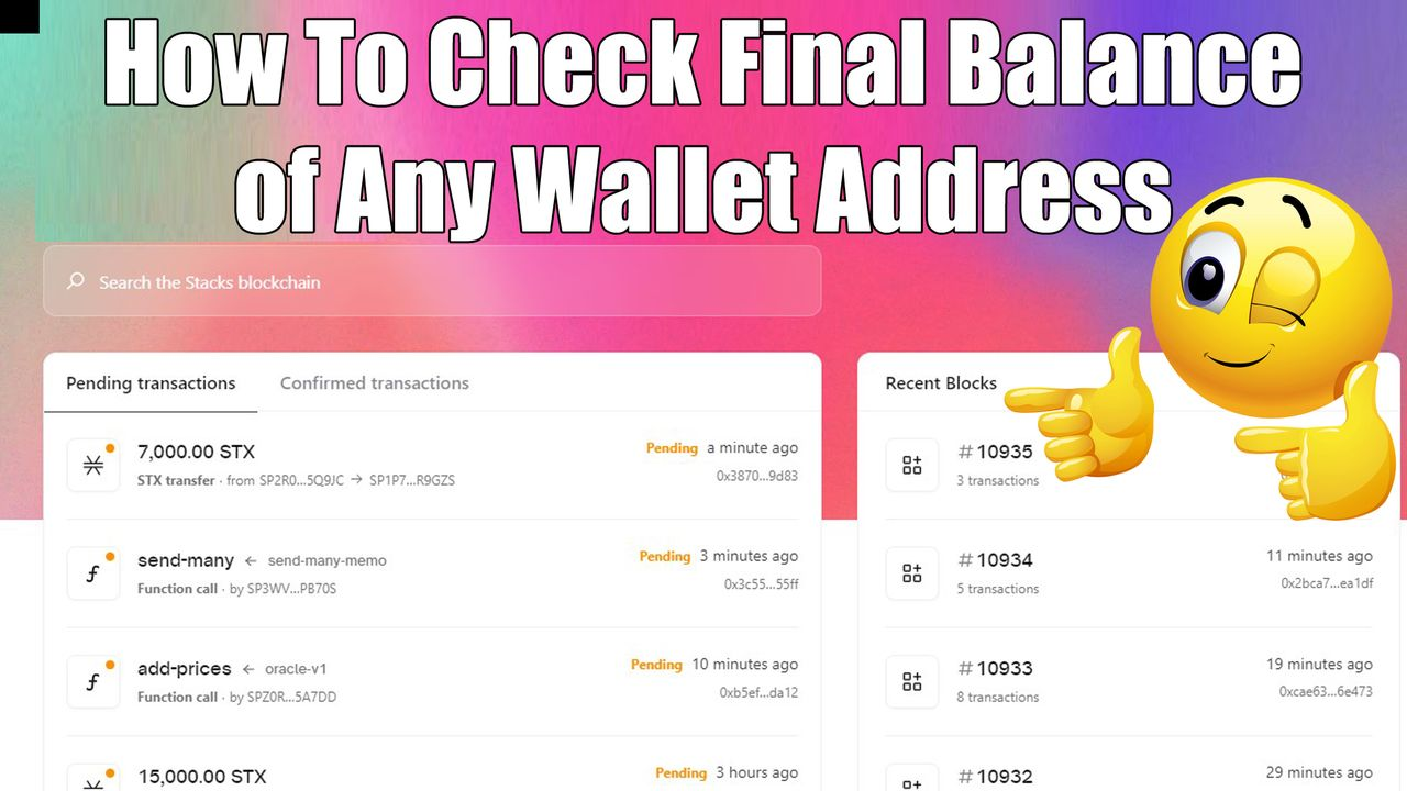 How To Check Final Balance of Any Wallet Address of Stacks ( STX ) by Crypto Wallets Info.jpg