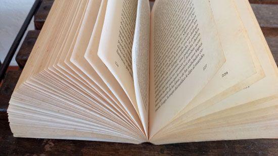 libro-550.jpg