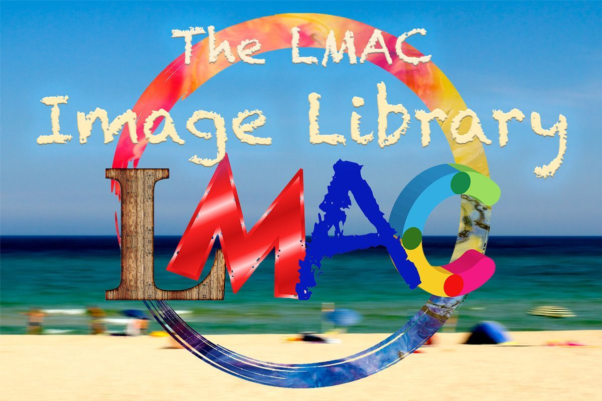 LIL-image-library.jpg