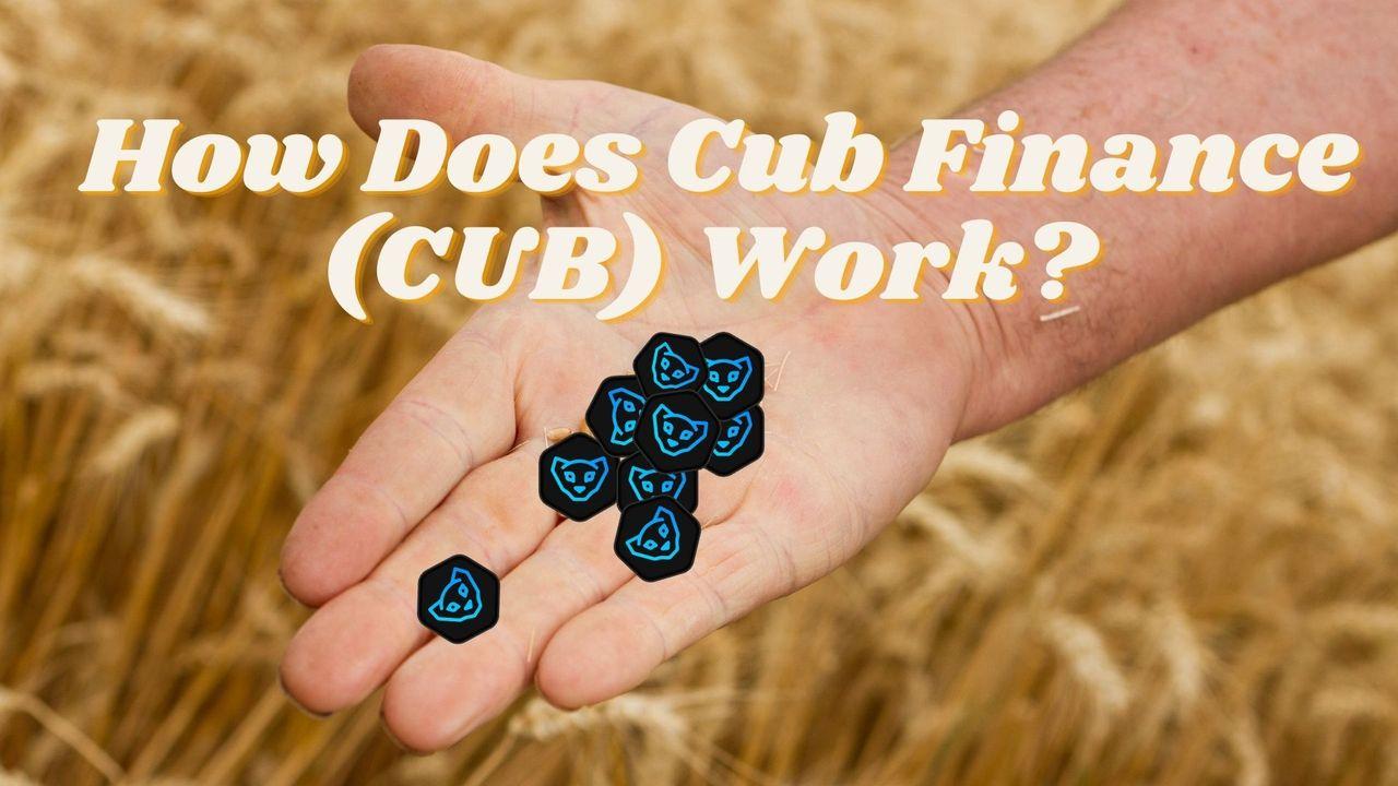 How Does Cub Finance CUB Work.jpg