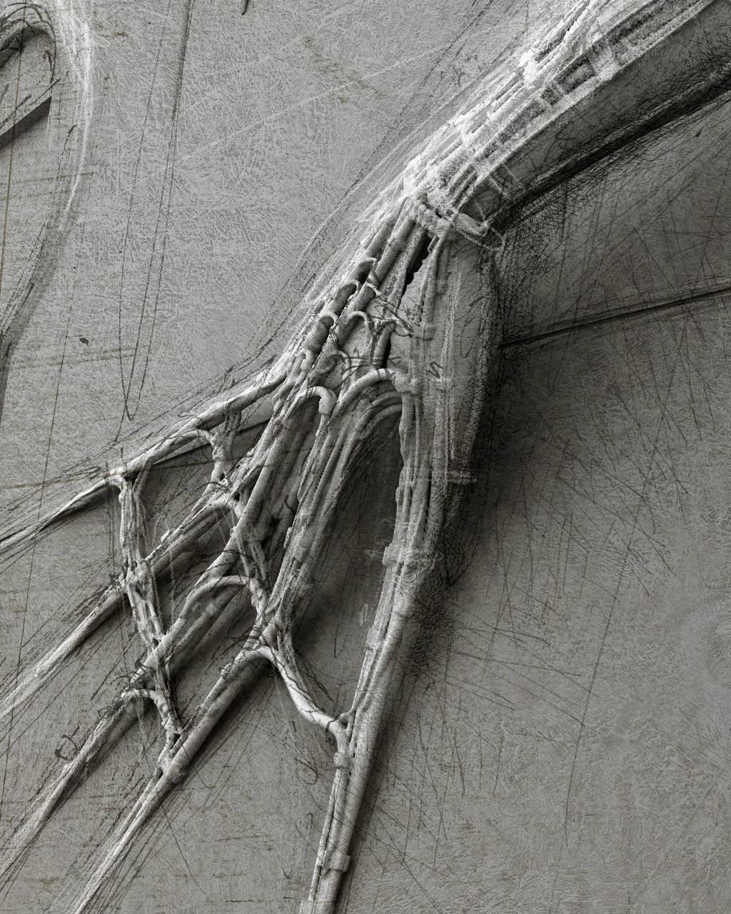 Gynoid D01  FB3.jpg