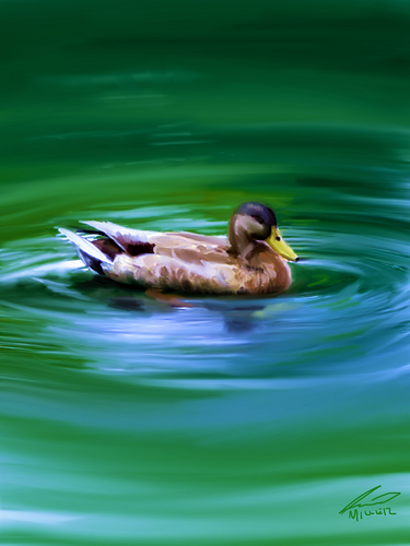 Sleeping Mallard - My First NFT Release on NFT Showroom!!!