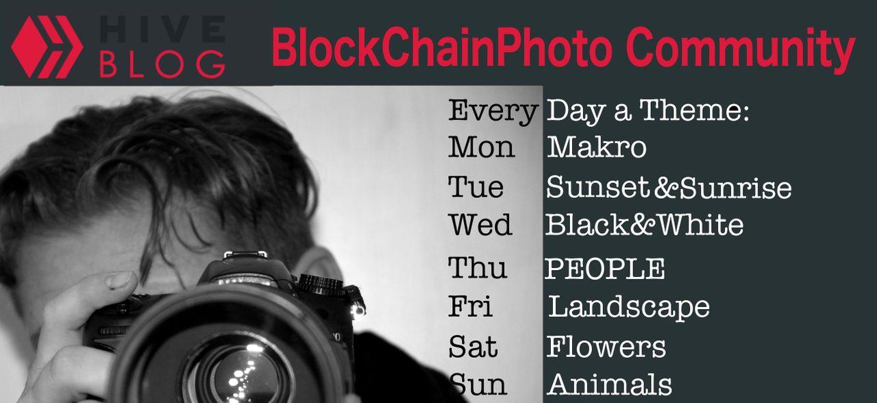 blockchainphotohive.jpg