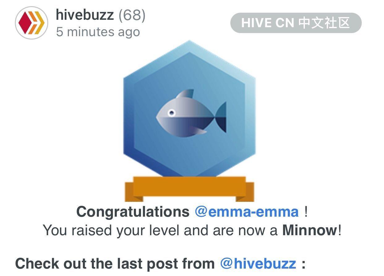 hive_64_2.jpeg