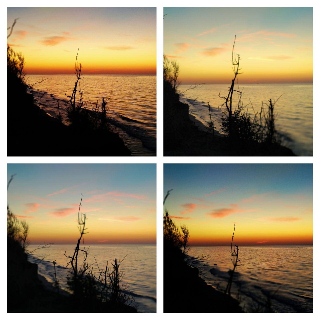 PicsArt_08-14-11.04.26.jpg