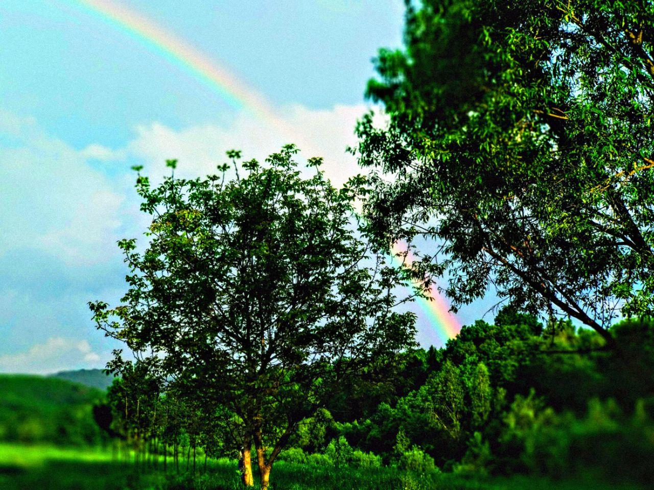 PicsArt_06-21-04.17.09.jpg